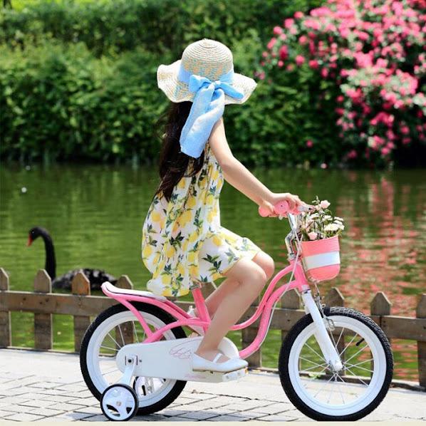 Xe đạp trẻ em chính hãng LanQ, Royalbaby, Stitch, TrinX, Galaxy,... - 7