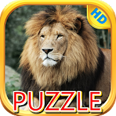 Lion and Big Cats-Puzzle Slide