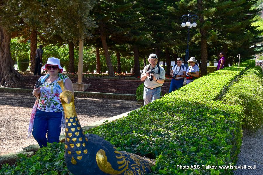Бахайские сады, экскурсия, гид Светлана Фиалкова