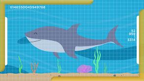 Sharks and Stingrays thumbnail
