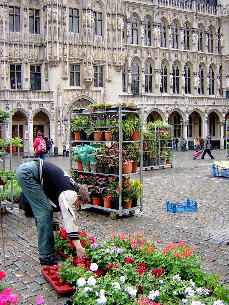 Mercatino dei fiori nella Grand Place di Bruxelles di Mar955
