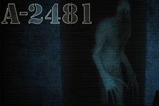 A-2481のおすすめ画像1