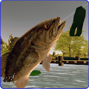 Toad Time Bass Fishing 1.1