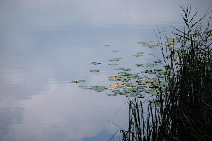 Atmosfere d'acqua autunnali di kyra
