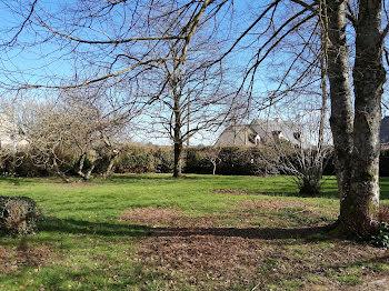terrain à Thorigné-Fouillard (35)