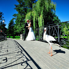 Wedding photographer Alla Korzh (aallaa). Photo of 28.11.2014