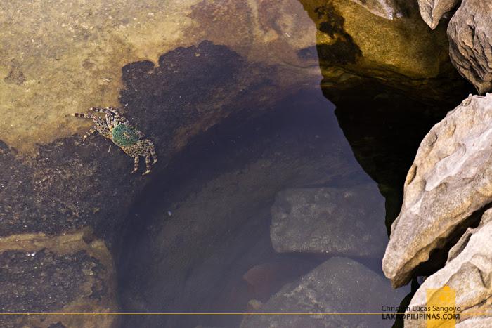 Yehliu Geopark Rock Holes