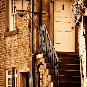 Cobbles by Steve Weston - City,  Street & Park  Historic Districts