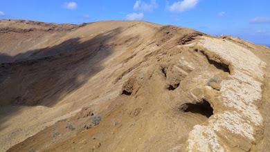 Photo: Bruthöhlen der Pardelas