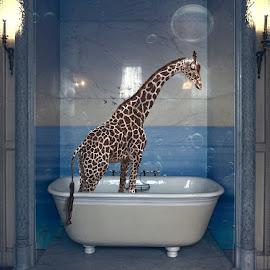Giraffe in the Bath... by Katherine Rynor - Digital Art Animals ( marble, surreal, blue, giraffe, bath, digital art )