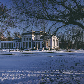 Casino by Paul Voie - City,  Street & Park  City Parks ( cluj, parks, casino, winter, landscape )