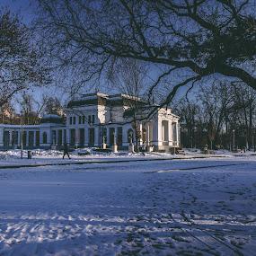 Casino by Paul Voie - City,  Street & Park  City Parks ( cluj, parks, casino, winter, landscape )