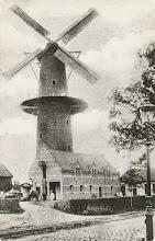 Photo: Molen Liesboslaan rond 1900