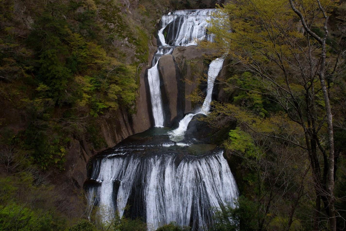 【旅12日目】日本三名瀑の一つ「袋田の滝」を観光していたらピンク社長にお会いした!