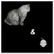 MCM Cat and Mouse Game  Icon