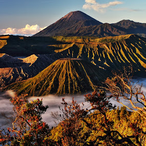 Mount Bromo by Agung A - Landscapes Mountains & Hills ( mountain java indonesia bromo famous scenic beautiful sunrise landmark )