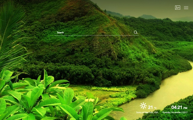Tropical Rainforest Wallpapers Hd New Tabs