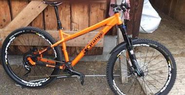 Four bikes stolen from Belan property