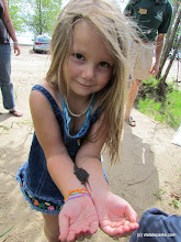 Photo: How cute! Girl with baby turtle at Alburg Dunes State Park by Raven Schwan-Noble
