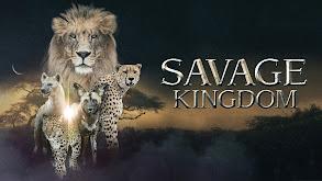 Savage Kingdom thumbnail