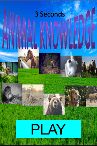 AnimalKnowledge 動物找一找