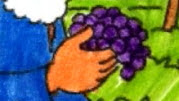 Appelés à devenir de gentils vignerons
