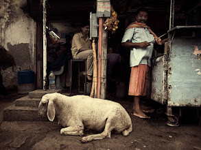 Photo: Mumbai's street life, food freshness guaranteed. www.michiel-delange.com  #streetphotography #streetphotographers