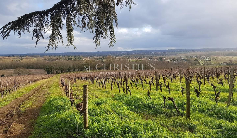 Vignoble Sainte-Croix-du-Mont