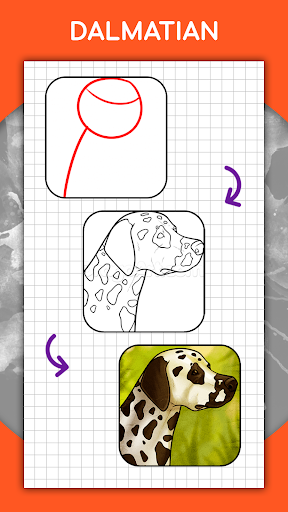 How to draw animals step by step, drawing lessons 1.3 Screenshots 5