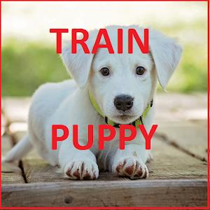 Tải Dog Training In 30 Days APK