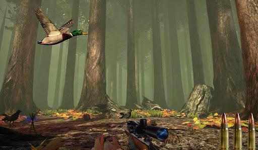 Duck Sniper Shooter