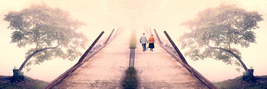 by Greg Booher - Digital Art Places ( tranquil, foggy, fog, atmosphere, misty, mist )