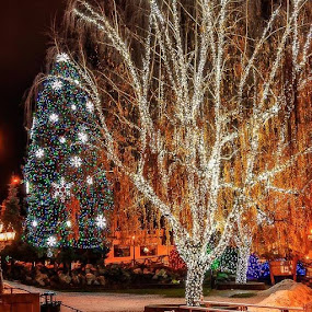 Its a Leavenworth WA XMAS by Steve Fisher - Public Holidays Christmas (  )