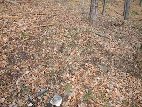 Photo: Nenápadný výchoz sedimentů (13.1. 2014).