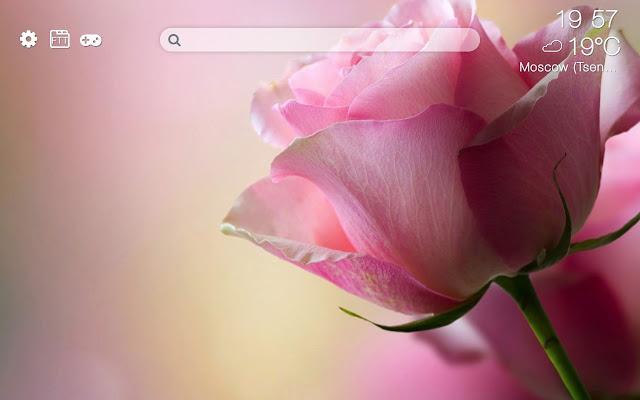 Flowers HD new free tab theme