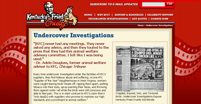 Kentucky_Fried_Cruelty__Undercover_Investigations