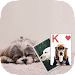 Solitaire Cute Puppies Theme Icon