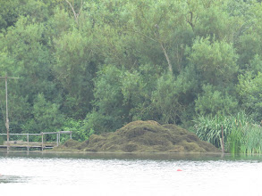 Photo: 25 Jul 13 Priorslee Lake: Or indeed piled up there ... (Ed Wilson)