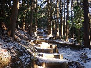 木の階段を登る