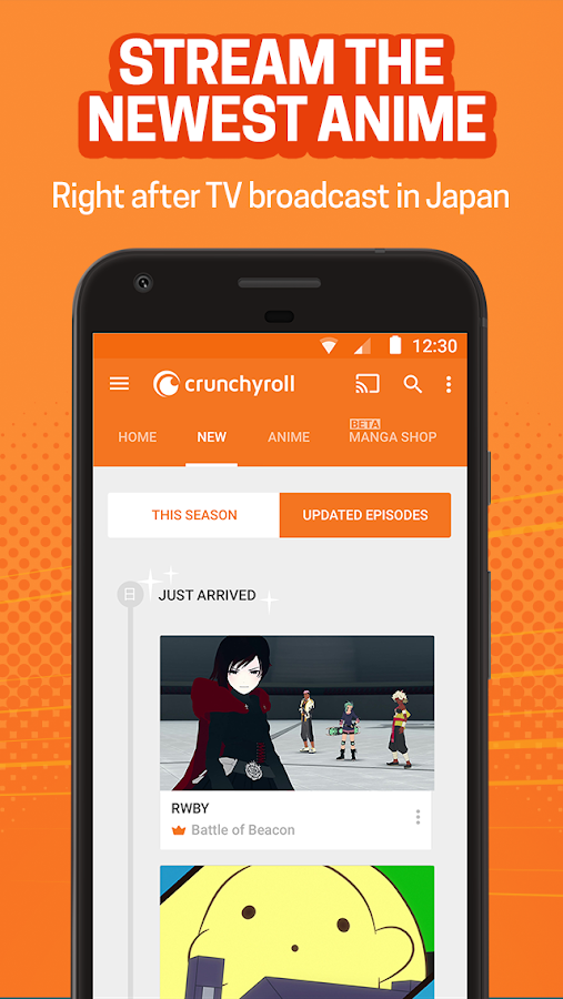 Crunchyroll - Everything Anime- screenshot