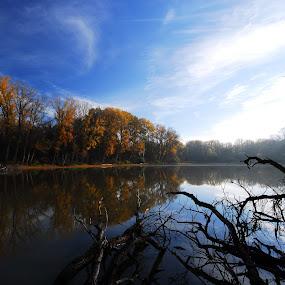 Backwater by Sámuel Zalányi - Landscapes Waterscapes ( backwater, autumn, shallow, sunshine, lake, tisza, river,  )