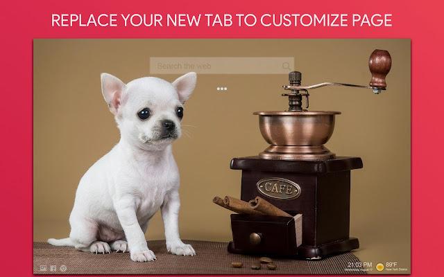 Chihuahua Dogs Wallpaper HD Custom New Tab