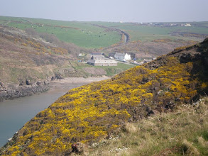 Photo: From Broad Haven to Solva (Nolton Haven)