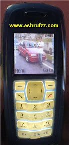 My Nokia 3100