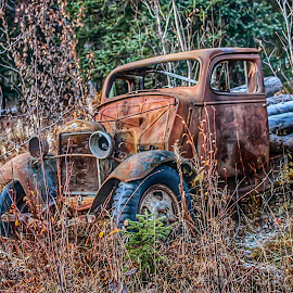 Left To Rust by Patricia Phillips - Transportation Automobiles ( old vintage vehicals abandoned alaska )