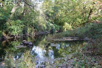 Photo: Fishing River