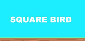 Square Bird kostenlos am PC spielen, so geht es!