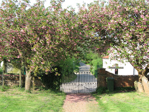 Photo: Double cherry trees frame a gate in the village of Elsing.