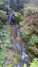 Photo: Wir starten in Miesenbach - und aufgrund der  Regenfälle in den letzten Tagen fließt genug Wasser überall.