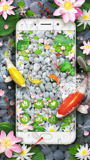 Lively Koi Fish 3D Theme for PC